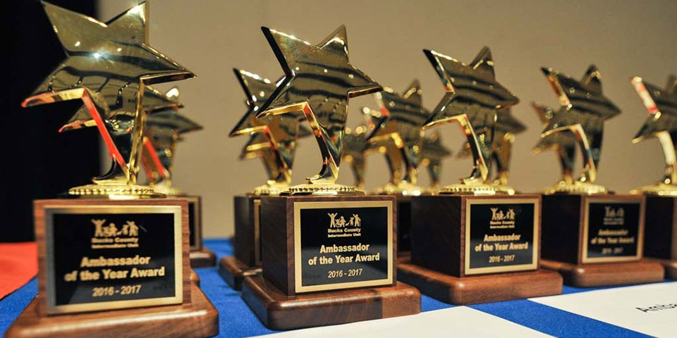 Bucks IU Ambassador of the Year trophies aligned on a table