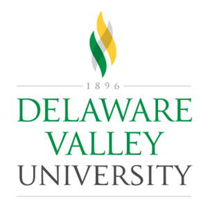 Delaware Valley University name with gray, gold and green flame design.